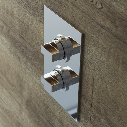 Modern Shower Valves