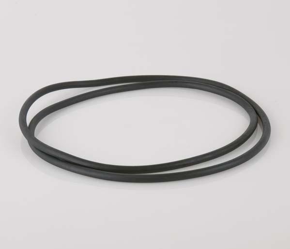 450mm Chamber/Riser Seal