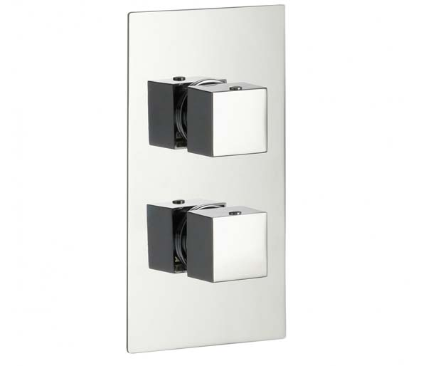 Bloque2 1 Outlet Thermostatic Shower Valve