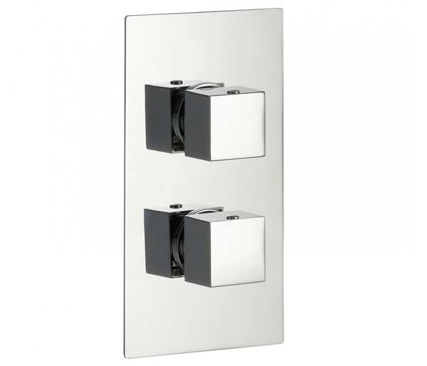 Bloque2 2 Outlet Thermostatic Shower Valve