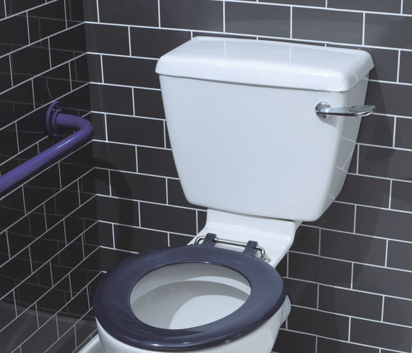 T&L Care Close Coupled Cistern Shell only